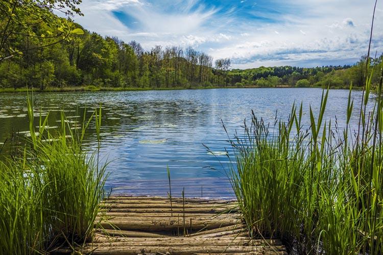 Vue sur le lac de Viremont, Jura